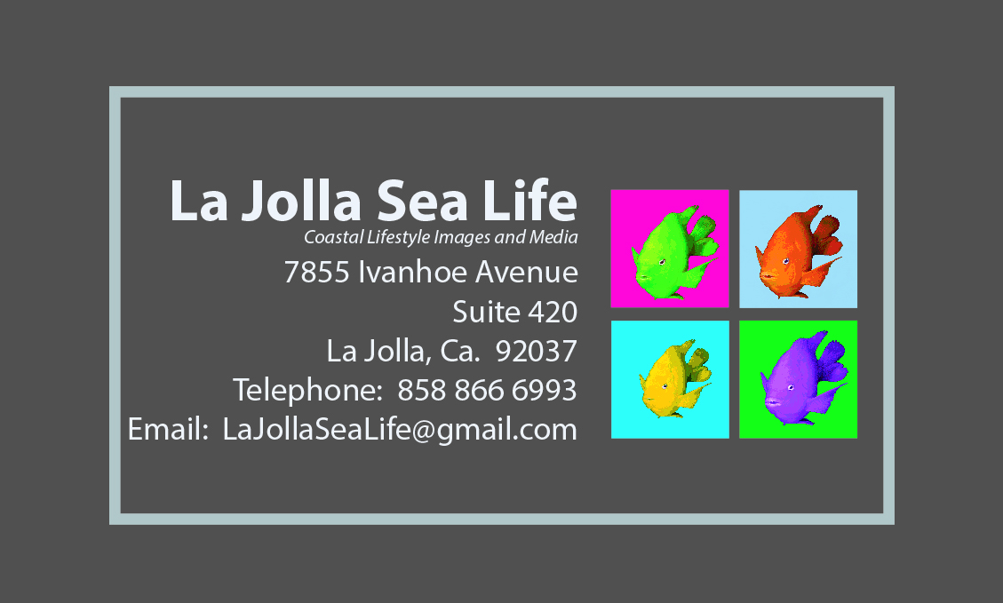 ljsl business card gray